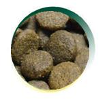 Mangus del Sole - Dog Grain Free Asinello Patata Dolce. 2kg