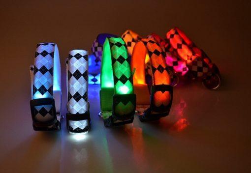 Let's Pet – Collare USB lampeggiante. Colore celeste taglia L