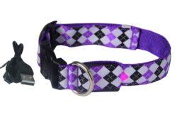 Let's Pet – Collare USB lampeggiante. Colore viola taglia L
