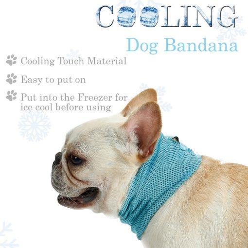 Bandana rinfrescante per Cani. Medium