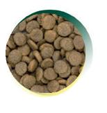 Mangus del Sole - Dog Grain Free Maiale Patata Dolce. 6kg