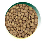 Mangus del Sole - Cat Superpremium Pollo Riso. 2kg