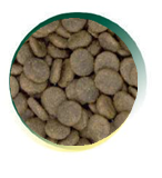 Mangus del Sole - Dog Grain Free Senior Trota Salmone. 12kg