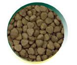 Mangus del Sole - Dog SuperPremium Tacchino Riso. 12kg