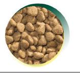 Mangus del Sole - Dog Hypoallergenic Monoproteico Tacchino Riso. 2kg