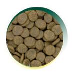 Mangus del Sole - Dog Grain Free Tacchino Patata Dolce. 6kg