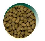 Mangus del Sole - Cat Hypo Tacchino. 2kg