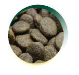 Mangus del Sole - Dog Grain Free Tonno Salmone Patata Dolce. 2kg