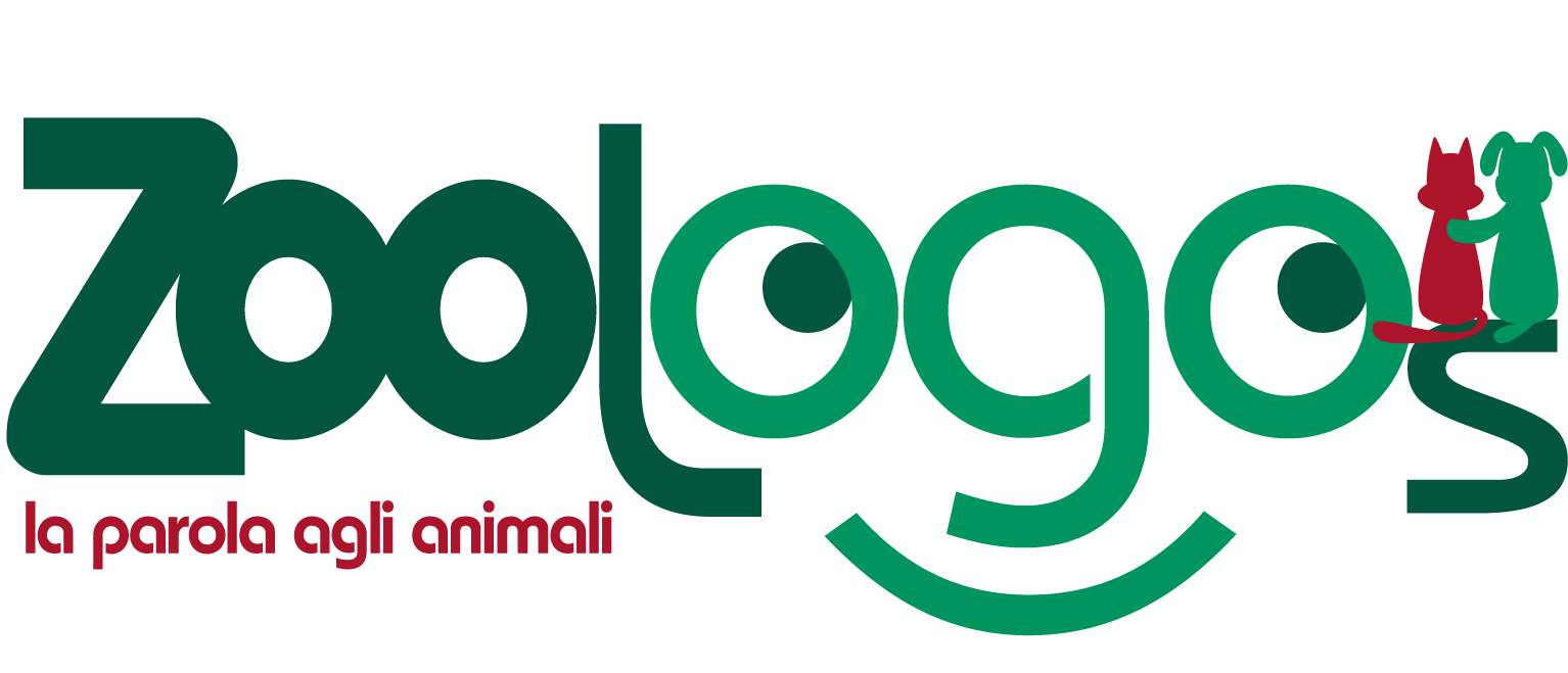 – ZOOLOGOS – Negozio Animali